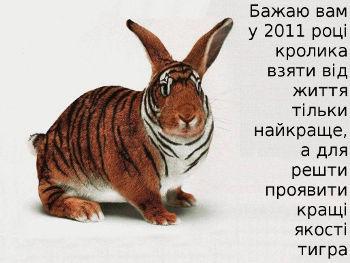 2011 - рік кролика. Новорічні смс поздоровлення з Новим роком